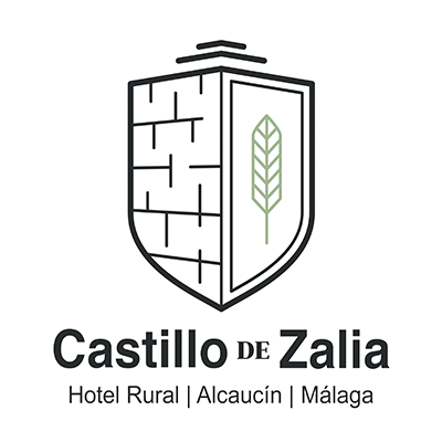 Castillo de Zalia